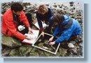 Shorekeepers Atlas